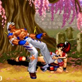real bout fatal fury 2: the new comers