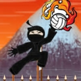 ninja volleyball