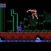 Batman - The Video Game