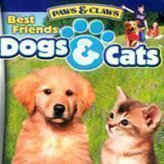 best friends: dogs & cats