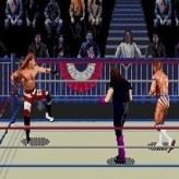 WWF WrestleMania 95