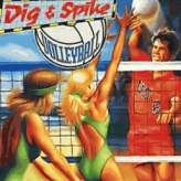 dig & spike volleyball