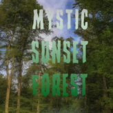 mystic sunset forest
