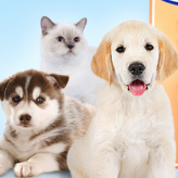 wauies: the pet shop game
